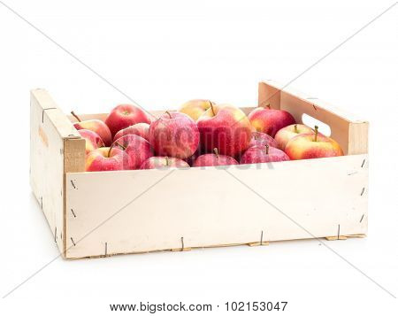 Wooden crate full of fresh and juicy red apples shot on white background