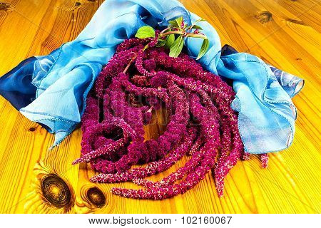 Amaranthus Caudatus Flowers, Known As Love Lies Bleeding