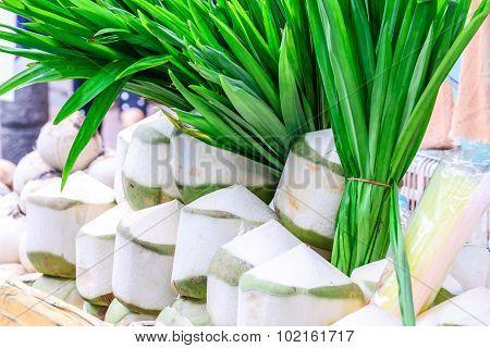 Freshness peeled coconut with pandanus leaf background.