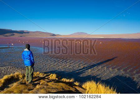 Tourist At