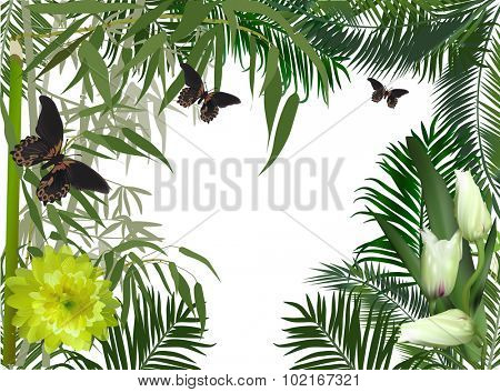 illustration with green bamboo and dark butterflies