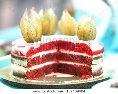 Red velvet cake at  picnic, close-up, decorated with physalis, a very small depth of field, soft blu