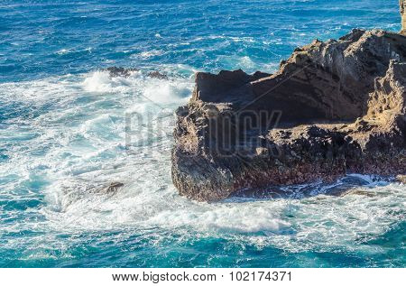 On rocky ocean coast.