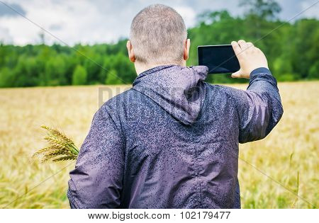 Farmer filmed with tablet PC on yellow cereal field