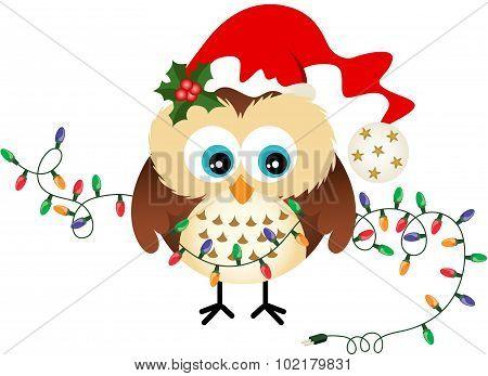 Owl with Christmas Lights