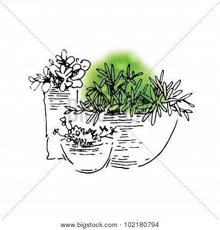 Garden elements sketch