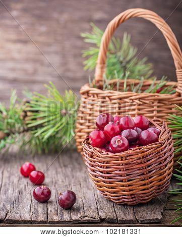 Fresh cranberries in a wicker basket on  dark wooden background