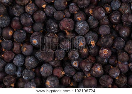 Dried Black Currant