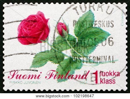 Postage Stamp Finland 2004 Rose, Flower