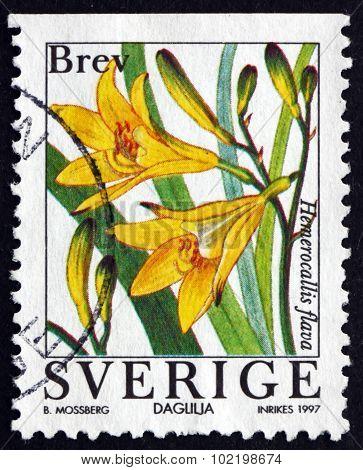 Postage Stamp Sweden 1997 Lemon Daylily, Flowering Plant