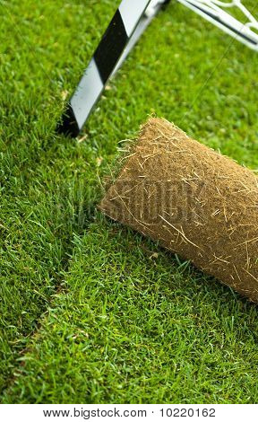 Turf Grass Roll On Sport Field - Closeup