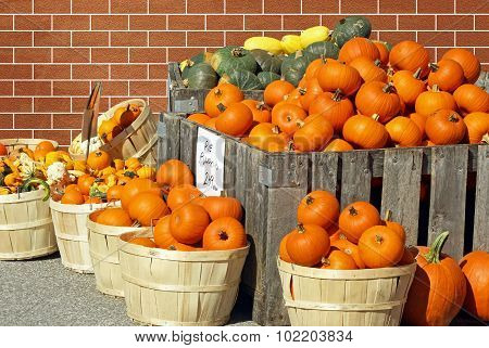 Pumpkins And Gourds For Sale at an outdoor Farmer's Market