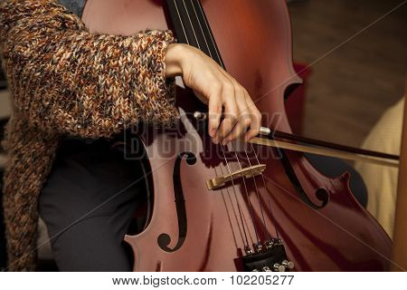 the detail of cello