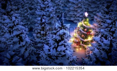 Lightened Christmas Tree In Pine Woods