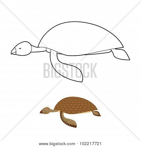 Water Turtle Coloring Book. Marine Animal With Shell. Vector Illustration