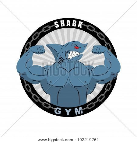 Angry Strong Shark. Shark Bodybuilder With Big Biceps. Emblem For Sports Teams. Logo For Gym. Athlet