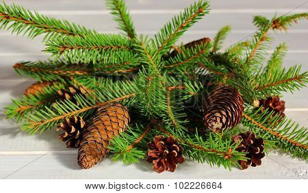 coniferous composition
