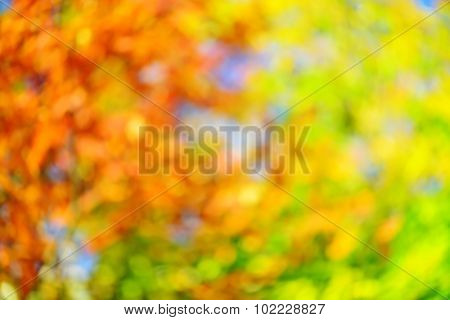 Abstract fall blur decorative background
