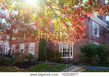 Autumn scene at Cambridge, Massachusetts, USA.