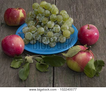 Still Life Plate Of Grapes And Four Apples