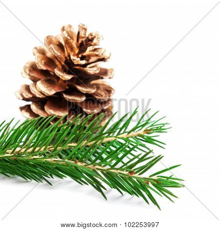 Christmas Ornaments On Christmas Tree. Christmas Background With Fir Branch And Golden Cone Isolated