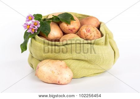 pure potatoes tubers and flower in a sack