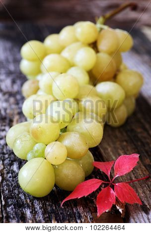 Bunch Of Green Grapes And Autumn Leaves