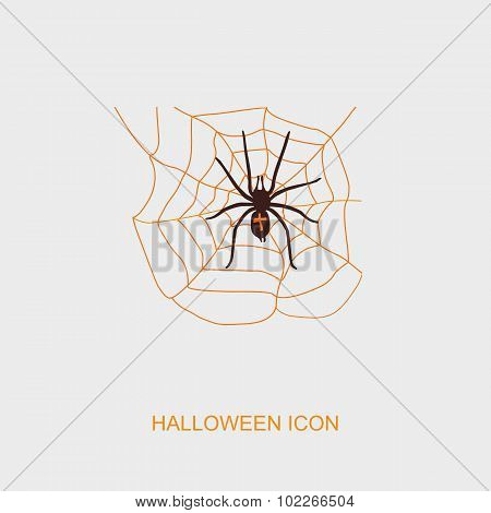 Spider Web And Spider Halloween Icon