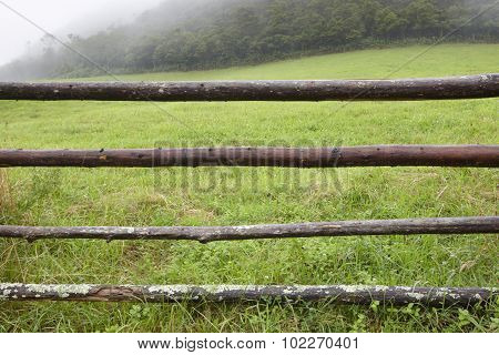 Foggy Green Landscape With Wooden Fence In Azores Archipelago. Portugal