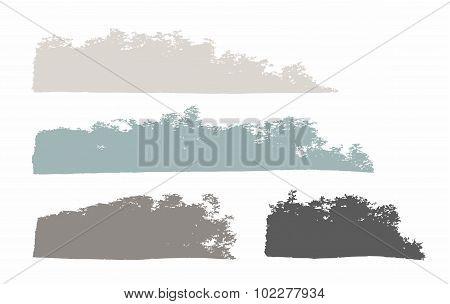 Paint, Gray, Long Trail, Brus...