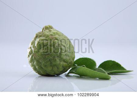 bergamot kaffir lime leaves and lime ingredient food asian thailand white background