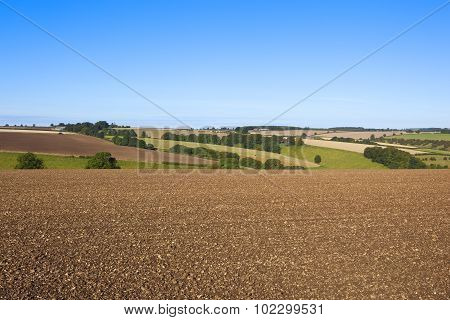 Plowed Field In A Scenic Landscape
