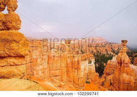 Summer Rain In Bryce Canyon