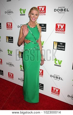 LOS ANGELES - SEP 18:  Tara Reid at the TV Industry Advocacy Awards Gala at the Sunset Tower Hotel on September 18, 2015 in West Hollywood, CA