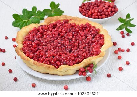 Cowberry Pie And  Fresh Berries Cowberry