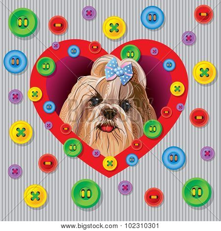 Card with a Yorkshire terrier