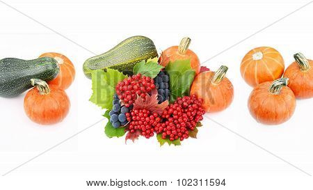 Pumpkin, marrow, guelder-rose berries with grapes