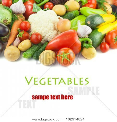 Organic Different Vegetables /  on white background  with copy space