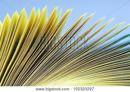 paper catalog macro texture