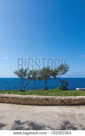Blue Grotto Park