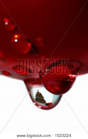 Macro Of Christmas Drop