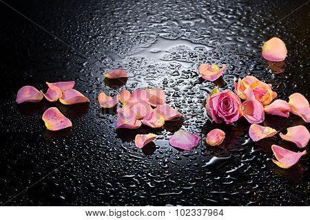 Rose And Petals On A Glass