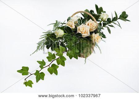 Floristic Composition