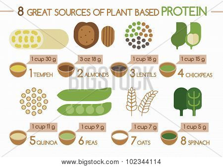 8 sources of plant based protein