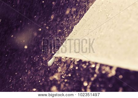 Selective Focus For Close Up A Part Of Umbrella Which Has Rain Drops Falling , Shallow Dof