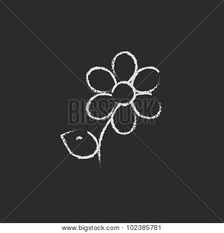 Flower hand drawn in chalk on a blackboard vector white icon isolated on a black background.