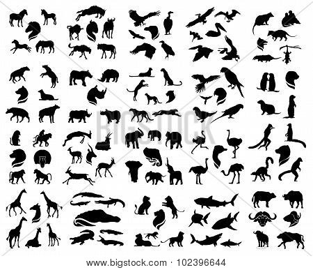 Set of african animals silhouettes