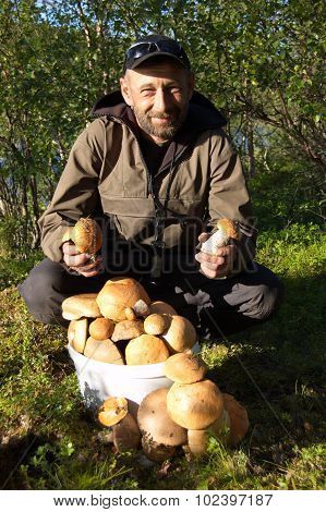 Man with a pail of aspen mushrooms in the forest.