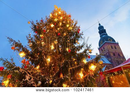 Christmas Tree In Riga's Christmas Market