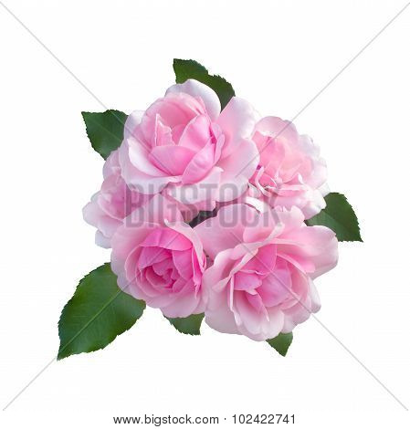 Bouquet Of Delicate Pink Roses